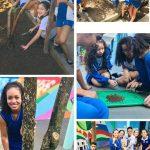 Revitalização da nossa horta escolar