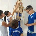 Aprendendo sobre o corpo Humano - 3ºano